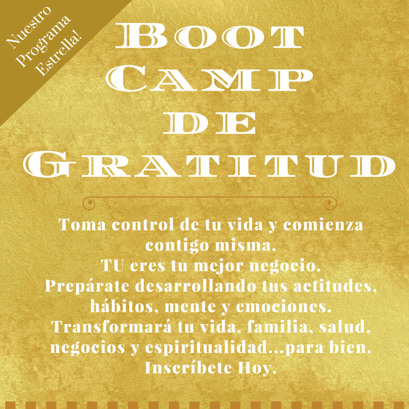 Boot Camp de Gratitud